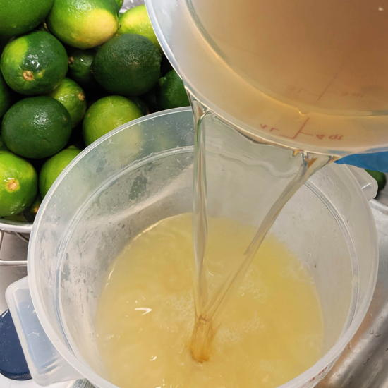 Pocho Pops - Paleta citrus juice (Foodzooka)