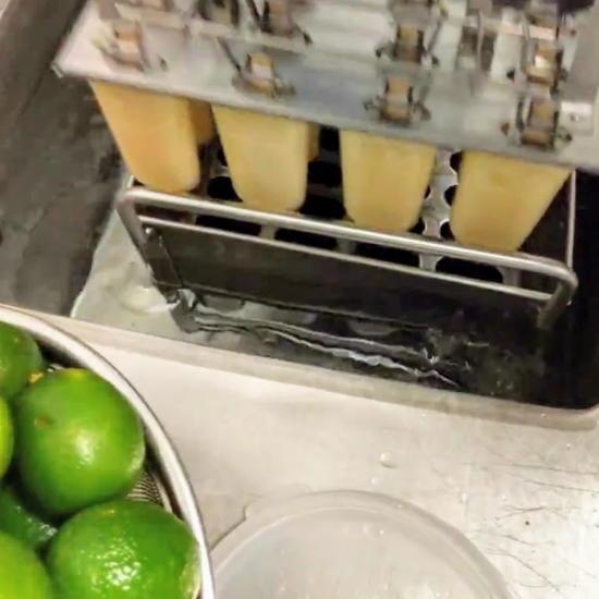 Pocho Pops - Paleta freezer molds (Foodzooka)